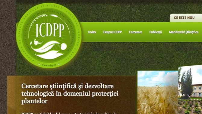 ICDPP